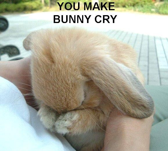 [Image: you-make-bunny-cry1.jpg]
